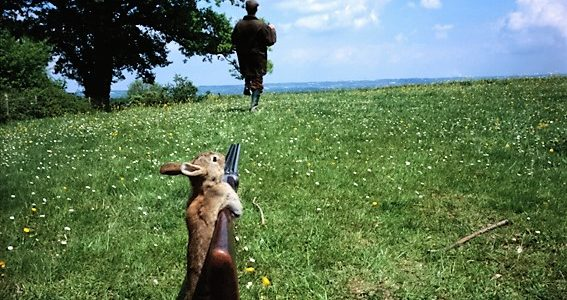 It's A Bad Day For Rabbits – Hunting Season
